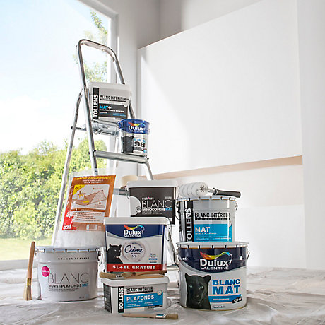 Peinture int rieure castorama - Comment preparer un mur avant peinture ...