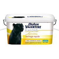 Peinture Dulux Valentine plafonds blanc mat 2,5L
