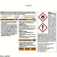 Peinture Fer anti-rouille Noir forgé 2,5 L