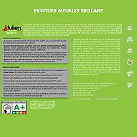 Peinture meubles rouge madras brillant JULIEN 0,75L