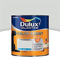 La peinture murs et boiseries Dulux Valentine Color resist nacre violet aspect mat de 1L