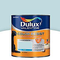 Peinture murs et boiseries Dulux Valentine Color resist bleu givré mat 1L