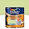 Peinture murs et boiseries DULUX VALENTINE Color resist vert fluorine mat 1L