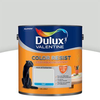Peinture Murs Et Boiseries Dulux Valentine Color Resist Nacre Mat 2 5l Castorama