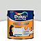 Peinture murs et boiseries Dulux Valentine Color resist nacre mat 2,5L
