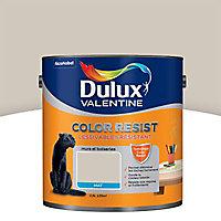 Peinture murs et boiseries Dulux Valentine Color resist sable de mer mat 2,5L
