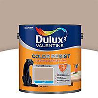 Peinture murs et boiseries Dulux Valentine Color resist noyer brut mat 2,5L