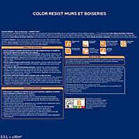 Peinture murs et boiseries Dulux Valentine Color resist zinc bleu mat 2,5L