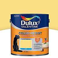 Peinture murs et boiseries Dulux Valentine Color resist jaune chrome mat 2,5L