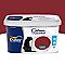 Peinture murs et boiseries DULUX VALENTINE Crème de couleur rouge glamour mat 2,5L