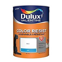 Peinture monocouche murs plafonds et boiseries Dulux Valentine Color Resist blanc mat 5L