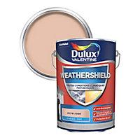 Peinture façade toutes conditions climatiques Dulux Valentine ocre rose 5L