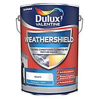 Peinture façade toutes conditions climatiques Dulux Valentine blanc 5L