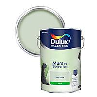 Peinture murs et boiseries Dulux Valentine vert saule satin 5L