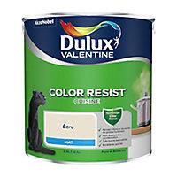 Peinture cuisine Dulux Valentine écru mat 2,5L