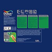 Peinture cuisine Dulux Valentine galet clair mat 2,5L