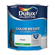Peinture salle de bain Dulux Valentine nuage satin 2,5L