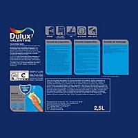 Peinture salle de bain Dulux Valentine galet clair satin 2,5L