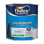Peinture salle de bain Dulux Valentine gris miroir satin 2,5L