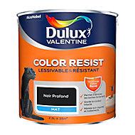 Peinture murs et boiseries Dulux Valentine Color Resist noir profond mat 2,5L