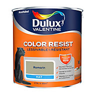 Peinture murs et boiseries Dulux Valentine Color Resist romarin mat 2,5L