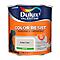 Peinture murs et boiseries Dulux Valentine Color Resist galet clair satin 2,5L