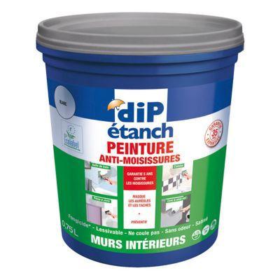 Peinture anti moisissures murs int rieurs dip blanc 0 75l castorama - Sous couche anti moisissure ...
