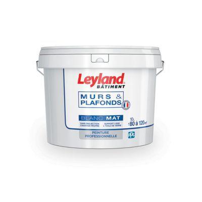 Peinture bicouche murs et plafonds leyland blanc mat 10l for Peinture tableau blanc castorama