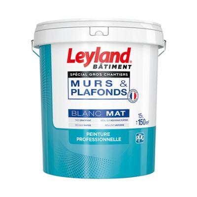 Peinture Monocouche Murs Et Plafonds Leyland Spécial Gros Chantiers Blanc Mat 15l Castorama