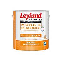 Peinture professionnelle murs et plafonds LEYLAND spécial pièces humides blanc satin 2,5L