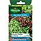 Graines de Laitue en Mélange (Bowl verte et rouge)