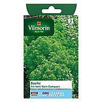 Graines de Basilic Fin Vert Nain Compact