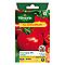 Graines de Tomate Fournaise Hybride F1
