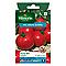Graines de Tomate Dona Hybride F1