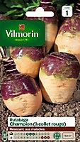 Graines de Rutabaga Jaune à Collet Rouge Vilmorin
