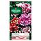 Graines de Godetia Double à Fleur Azalée Varié