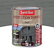 Protection teintée bois Syntilor Gris naturel 1L - 8 ans