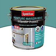 Peinture maison bois Intensiv Protect Gris bleuté 2L