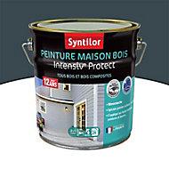 Peinture maison bois Intensiv Protect Gris foncé 2L