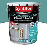 Peinture maison bois Intensiv Protect Gris bleuté 8L