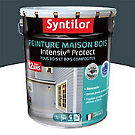 Peinture maison bois Intensiv Protect Gris foncé 8L
