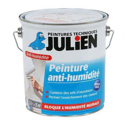 Peinture Anti Humidité Murs Intérieurs Julien Blanc Satiné 2