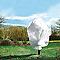 2 housses d'hivernage 30 g/m² 1,8 x 2 m