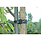 Collier fixation pour arbres 36cm