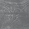 Cire effet métallisé BONDEX wengé argent 250ml