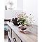 Céruse meubles et boiseries BONDEX blanc 0,5L