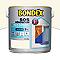 Peinture multi-supports BONDEX SOS Rénovation pierre 2L