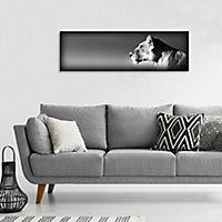 Impression sur verre Lionne 97 x 31 cm