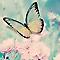 Toile imprimée Papillon 30 x 30 cm