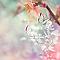 Toile imprimée Envolée papillons 30 x 30 cm